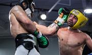 Malignaggi: 'McGregor rên rỉ như mèo cái'