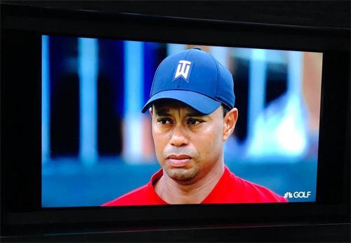Tiger Woods chính là người được theo dõi sát sao nhất làng golf tuần qua.