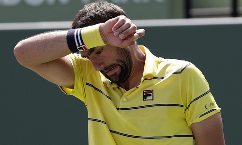 Cilic nối gót Federer, sớm rời Miami Mở rộng. Ảnh: AP.