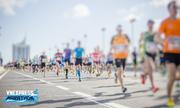 VnExpress tổ chức giải marathon quy mô 5.000 VĐV