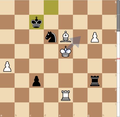 Thế cờ sau 63...Kc7. Máy tính đề xuất nước đi tối ưu cho Trắng là 64.Kf6, để bảo vệ tốt g6. Phương án để Trắng có thể thắng ở tàn cuộc này là đưa tượng về đường chéo b1-h7, vừa để ngăn tốt đen c3 xuống phong cấp, vừa bảo vệ tốt g6. Sau đó, Vua trắng sẽ di chuyển sang bắt tốt c3, hoặc hỗ trợ đưa tốt g6 xuống phong cấp tùy vào tình hình.
