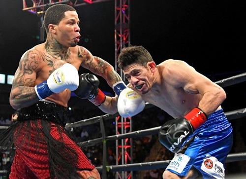 Davis (trái) thắng knock-out kỹ thuật Hugo Ruiz ngay hiệp một hôm 9/2. Ảnh: Reuters.