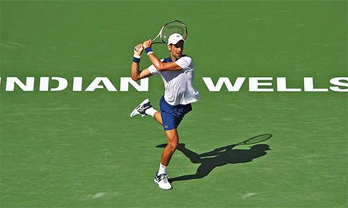 Djokovic có thể san bằng kỷ lục của Nadal và phá kỷ lục của Federer, nếu vô địch Indian Wells. Ảnh: ATP.