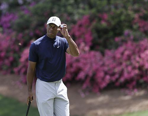 Tiger Woods khởi đầu thuận lợi trong hành trình giành major đầu tiên sau 11 năm. Ảnh:AP.