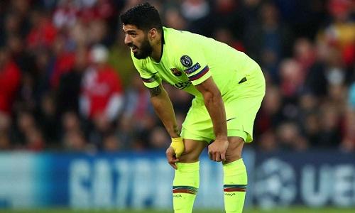 Suarez có nguy cơ vắng mặt tại Copa America hè này. Ảnh: Clive Brunskil.