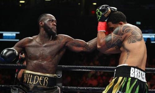 Cú đấm quyết định của Wilder (trái). Ảnh: Reuters.