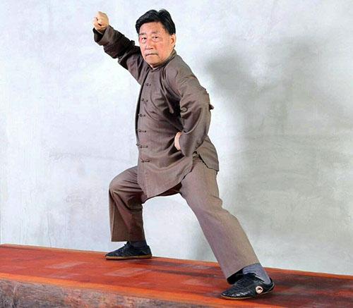Võ sư Trần Tiểu Vượng - chưởng môn Trần Thức Thái Cực quyền.