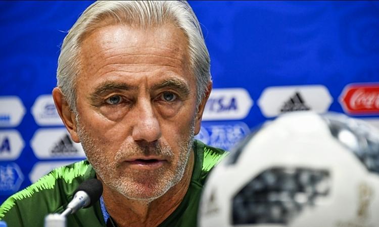 HLV Bert van Marwijk ấn tượng với đội tuyển Việt Nam ở Asian Cup, dù khi đó ông chưa dẫn dắt UAE. Ảnh: AFP.