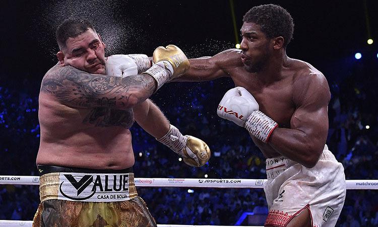 Joshua (phải) áp đảo Ruiz trong phần lớn trận đấu. Ảnh: DM.