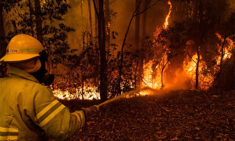 Thảm họa cháy rừng ở Australia đang nhận được sự quan tâm sâu rộng trên toàn thế giới. Ảnh: New York Times.