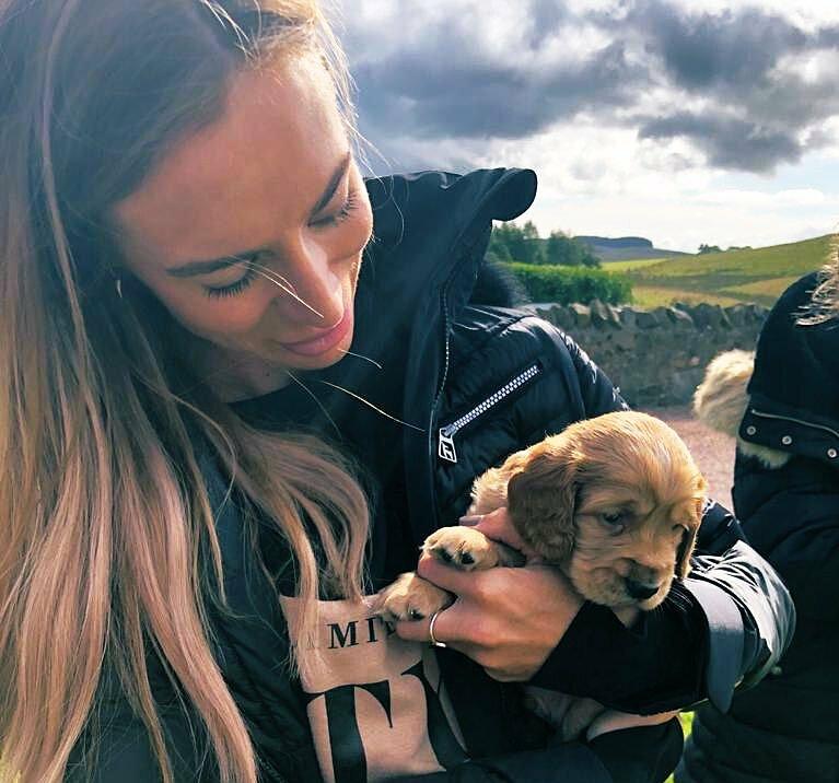 Graville vẫn giữ nuôi hai chú chó cưng sau khi chia tay Giggs. Ảnh: Twitter / Kate Graville
