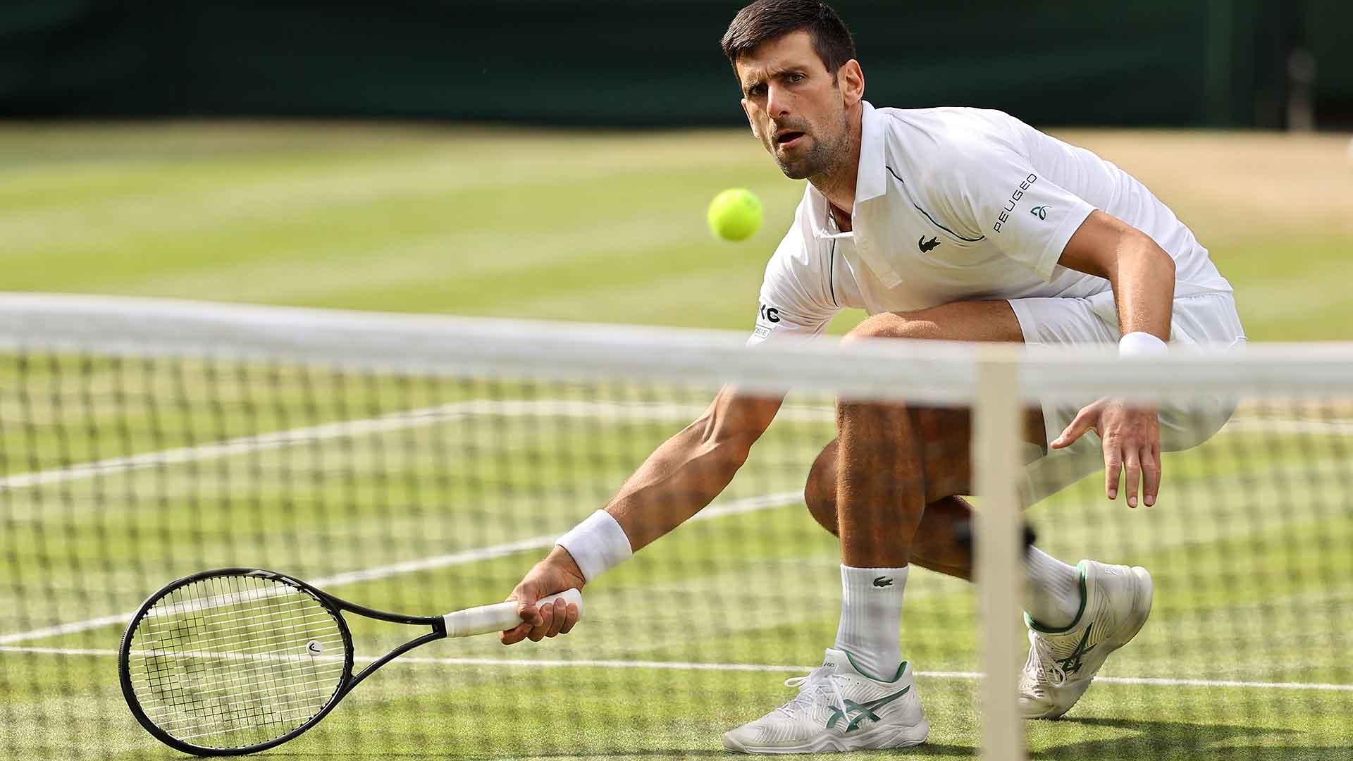 Djokovic thắng 71% điểm trên lưới cả trận. Ảnh: AP